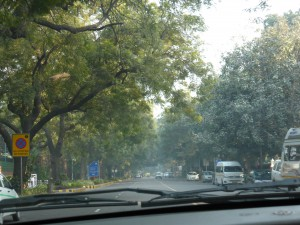 Delhi in the center 3rd of January on the way toward Humayun's Tomb.